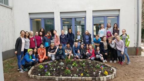 Blumenbeet der Klasse 7a (2017)