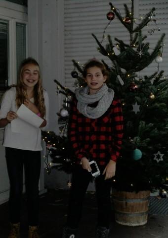 Interview mit einem Weihnachtsbaum