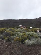 La Réunion 2017